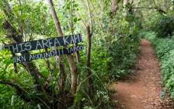 Taboo Trail-Kauai