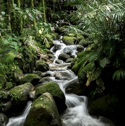 Waterfall-Kauai -