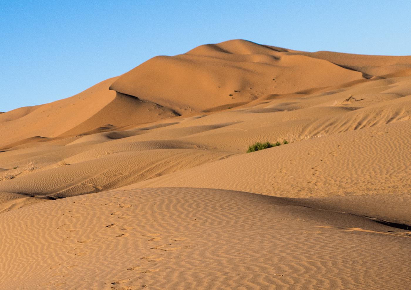 Sahara desert