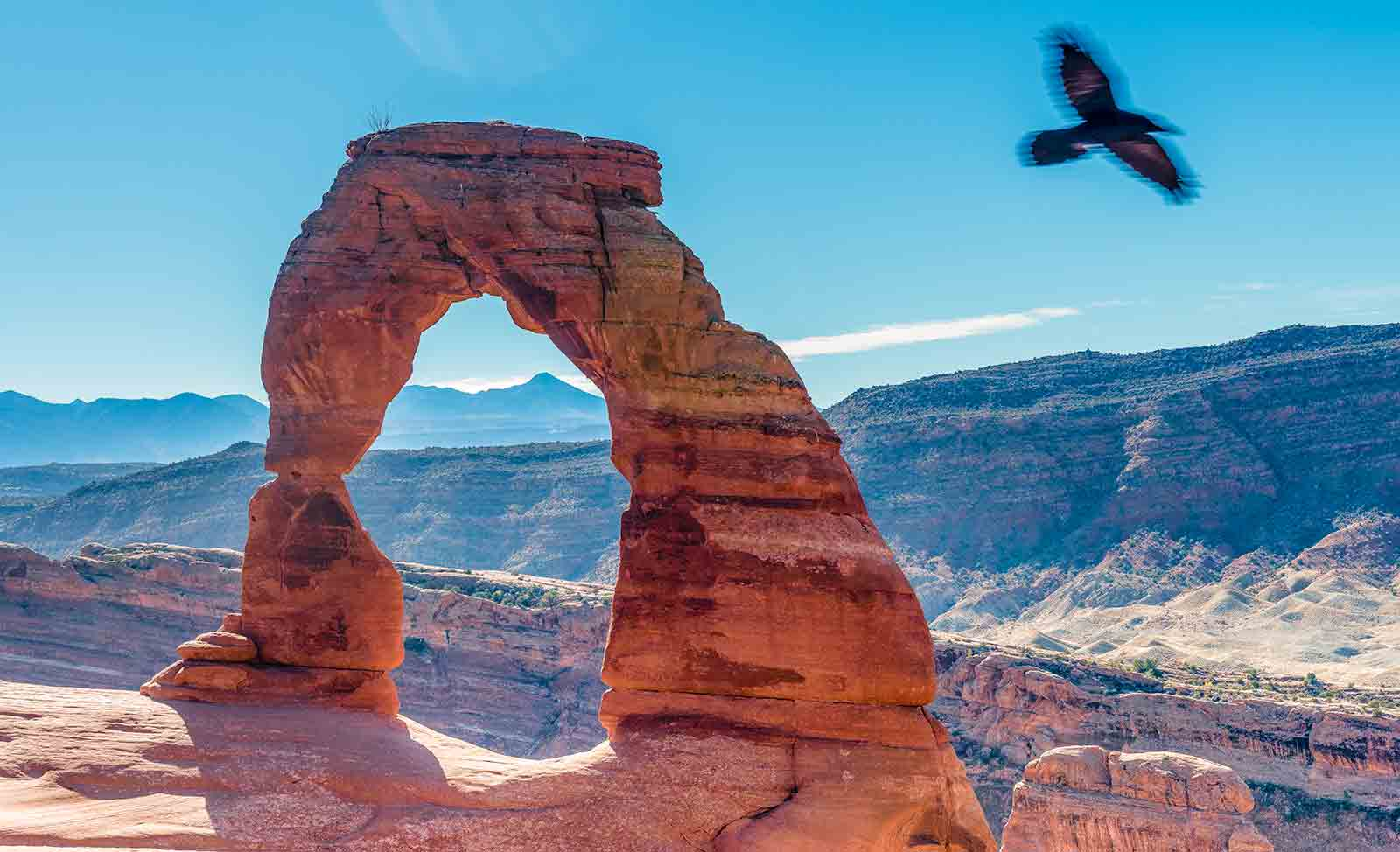 Delicate-Arch with Crow