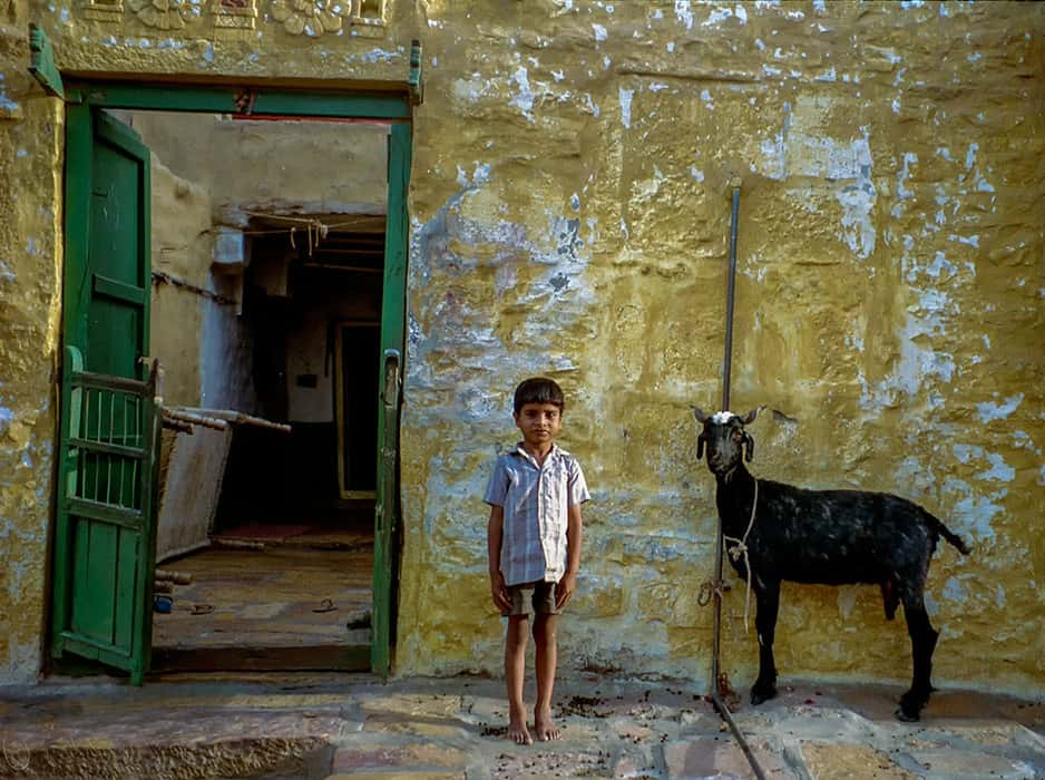 A boy and his goat, Jaipur India
